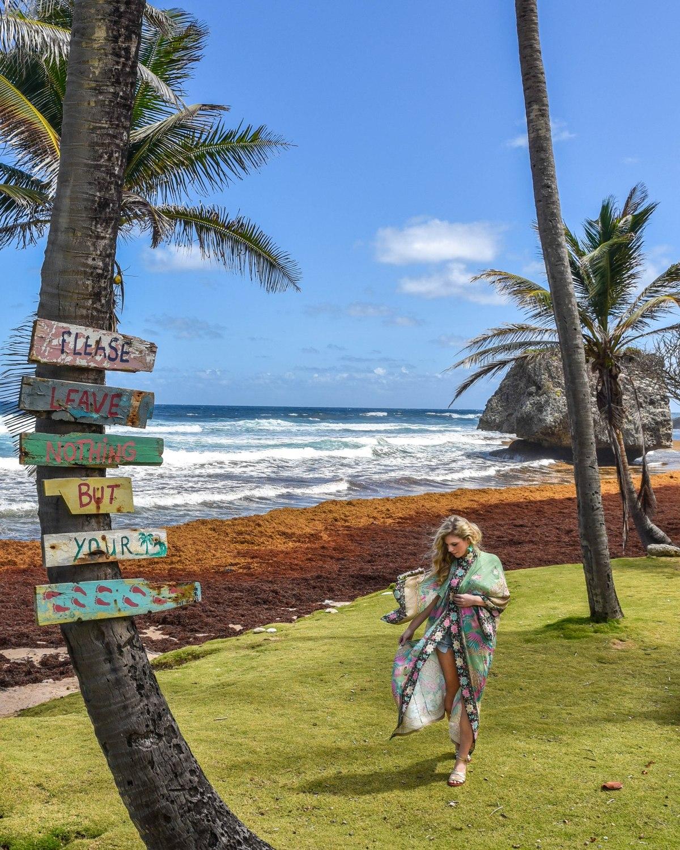 The Best Beaches inBarbados