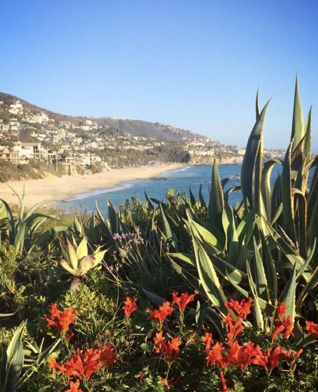 Laguna Beach Travel Guide to Los Angeles California