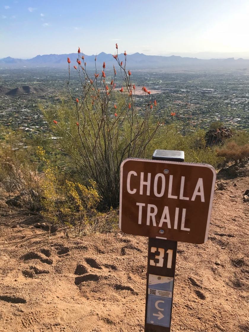 Camelback Mountain Cholla Trail Scottsdale Arizona Hike